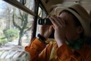 bustour1.jpg